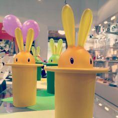 Magic Bunny - to magia, z kapelusza wyciągamy wykałaczkę :) Magic Bunny na Spokojnej 7 w FF i na FabrykaForm.pl