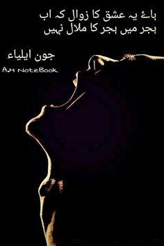 A.H John Elia Poetry, Jaun Elia, Punjabi Poetry, Poetry Lines, Urdu Poetry Romantic, Poetry Feelings, People Quotes, Deep Thoughts, Islamic Quotes