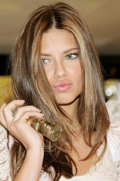 Light Brown Hair with Highlights | Photo Gallery of the Highlights Hair Light Brown
