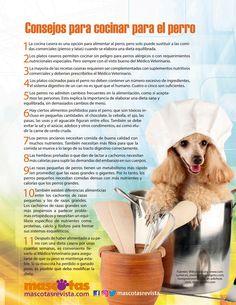 Publicación digital de mascotas Agosto-Septiembre 2016 • Venezuela: Pinscher Miniatura, un aguerrido perro de bolsillo; Siamés, el gato-perro; pez Mandarín, un dragón de agua salada; Ideas para cambiar el plan de alimentación de las mascotas; La muerte de una mascota; Día Mundial de la Rabia, Humor.