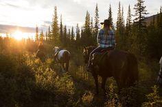 National Geographic Te paard door de Canadese wildernis: