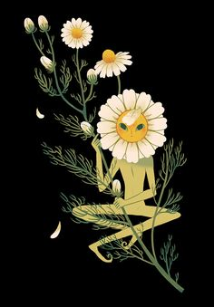 """Chamomile"" by Sara Kipin Art Inspo, Kunst Inspo, Inspiration Art, Art And Illustration, Art Gris, Art Hippie, Arte Indie, Art Mignon, Drawn Art"