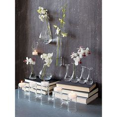 beaker glass tube wall vase. So simple! So cheap!