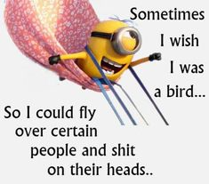 Funny Minion, bird, head. See my Despicable Me Minions pins https://www.pinterest.com/search/my_pins/?q=minions