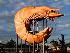 Amazing Australian Adventures: The Controversial Crustacean! Big Prawn, Ballina, New South Wales Sculptures, Lion Sculpture, Tourist Trap, Roadside Attractions, Australia Travel, Australia Funny, Land Art, Prawn, Worlds Largest