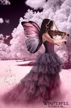 The Violin Fairy   #fairy   #fairies