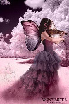 The Violin Fairy   #fairy   #fairies