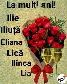 Eliana, Internet
