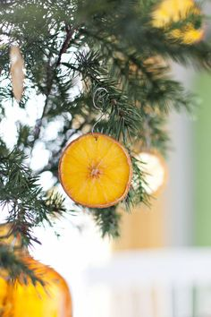 Dried Citrus Ornaments - Looking for a fresher way to decorate the tree? Mandi Johnson of A Beautiful Mess shows us that food ornaments don't have to include cranberries and popcorn. These baked citrus slices look good and smell great Natural Christmas, Simple Christmas, All Things Christmas, Winter Christmas, Handmade Christmas, Christmas Holidays, Merry Christmas, Crochet Christmas, Christmas Ideas