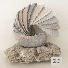 Cockle Shell Sculpture on Sea Stone Base by WhitemarshShellArt You can find Shell art and more on our website.Cockle Shell Sculpture on Sea Stone B. Sea Crafts, Nature Crafts, Home Crafts, Diy And Crafts, Baby Crafts, Seashell Projects, Driftwood Crafts, Seashell Art, Seashell Crafts