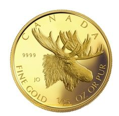 """Receive excellent suggestions on """"coin dealers"""". They are actually readily available for you on our web site. Bullion Coins, Gold Bullion, Initial M, Coin Dealers, Canadian Coins, Deer Family, Uncirculated Coins, Silver Eagles, World Coins"""