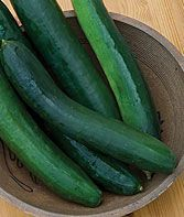 Cucumber, Sweet Success Hybrid  By far the sweetest flavor you'll find in any burpless...  more info  Product Details  Sun: Full Sun  Height: 6-8 inches  Spread: 36 inches  Days to Maturity: 58 days