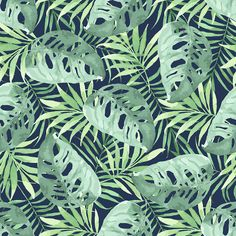 Tropical design in watercolor. on Behance