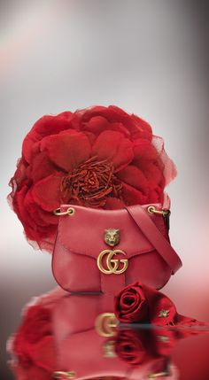 anbenna: Gucci - A Few Of My Favorite Things My Favorite Color, My Favorite Things, Mode Glamour, Simply Red, Bold Prints, Red Fashion, Italian Fashion, Shades Of Red, Red Gold