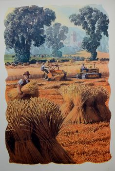 """Cutting The Wheat"" Charles Tunnicliffe - Love the Elm trees, they were so gracefull and beautiful. From the book 'Both Sides Of The Road: A Book About Farming' by Sidney Rogerson. British Artist, Landscape Paintings, Vintage Artwork, Painting, Illustration Art, British Art, Art, Charles, Nature Artists"