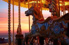 sunset circus  ....  *deep sigh*