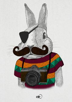 Hipster animal illustration series by Börg.