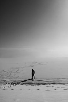 Lost in the white desert
