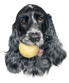 """Receive wonderful pointers on """"cocker spaniel puppies"""". They are available for you on our internet site. Animal Paintings, Animal Drawings, Dog Drawings, Tattoo Perro, Tatoo Dog, Popular Paintings, Dog Collar Tags, Cocker Spaniel Puppies, English Cocker"""