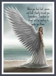 When you feel lost, pause and look closely around you. Somewhere, Somehow an Angel will be waiting to guide you Home. When You Feel Lost, How Are You Feeling, Angel Wings Drawing, Angel Artwork, Angel Pictures, Beautiful Angels Pictures, Angel Quotes, Angel Prayers, Angel Warrior