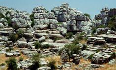 texturas y color de las rocas de las sabanas africanas - Buscar con Google