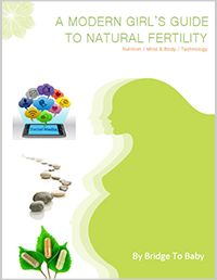 Bridge To Baby - Products & Support for Your Fertility Journey & Beyond!