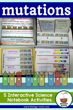 Mutations - Interactive Notebook Activities- set of 5 activities that cover gene and chromosomal mutations. Frameshift point mutation, etc. Great addition to any biology or life science class!