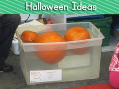 Will a pumpkin sink or float? http://heidisongs.blogspot.com/2011/10/spiders-and-pumpkins-and-bats-oh-my.html