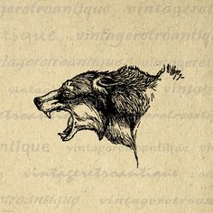 Digital Printable Fierce Wolf Graphic Wolves Image Animal Download Vintage Clip Art. Printable high quality digital illustration for iron on transfers, making prints, papercrafts, t-shirts, and other great uses. Real vintage art. Antique artwork. This digital image is large and high quality, size 8½ x 11 inches. Transparent background version included with every digital image.