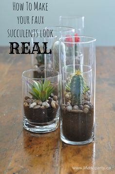 How to make your faux succulents look real