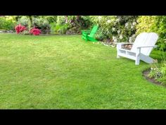 """Lawn Care Service Frisco TX Call 972 992 5296  """"http://mygreenerturf.com, We are your Lawn Care Service in Frisco TX. Call Us Today at 972-992-5296  or Visit:  Greener Turf 8700 Stonebrook Parkway #1614 Frisco, TX 75034 United States 972-992-5296  http://mygreenerturf.com  Greener Turf provides Frisco customers industry leading lawn care service products and services. Our company specializes in landscaper, yard maintenance and lawn care."""