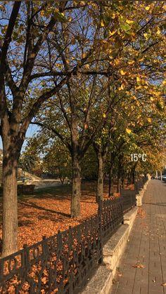 Season Of The Witch, Autumn Scenery, Autumn Cozy, Autumn Aesthetic, Best Seasons, We Fall In Love, Hello Autumn, Autumn Inspiration, Fall Halloween