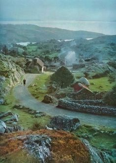 Ireland-A picture of what mesmerized & captivated me in the emerald Isle.  Magic!