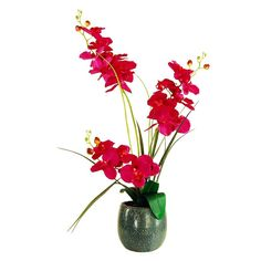 Designs by Lauren Artificial Red Phalaenopsis Orchid Plant, Multicolor