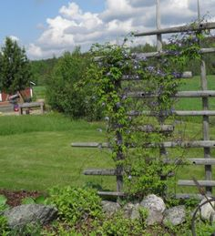 Garden Edging, Garden Trellis, Garden Planters, Vegetable Garden, Rustic Gardens, Outdoor Gardens, Labyrinth Garden, Greenhouse Gardening, Backyard