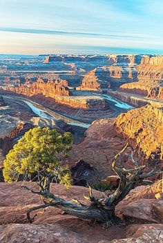 Looking forward to some hot n longer than im used.to hikes in moab this summer.    Overlook at Dead Horse Point, Moab, #Utah