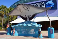 5 Fun and Free Things to do in Tampa with Kids - The World Is A Book