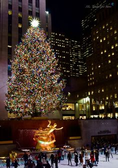 Have you visited New York City during the holiday season? I can give you 10 reasons not to..........                  ... Christmas Feeling, Merry Little Christmas, Winter Christmas, Christmas Lights, Christmas Time, Christmas Place, Xmas, Christmas Tree Wallpaper, Christmas Background