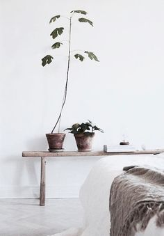 A wood bench used as a plant stand to bring a rustic touch to a white Scandinavian style bedroom.