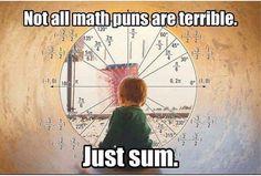 Not all math puns are terrible: Just Sum. Math Quotes, Math Memes, Puns Jokes, Math Humor, Nerd Humor, Dad Jokes, Funny Quotes, Funny Math Jokes, Calculus Humor