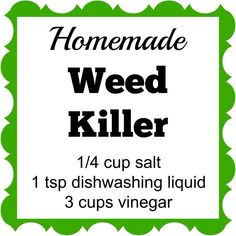Homemade Weed Killer This Homemade Weed Killer has only 3 ingredients. Spray it on the weeds and they'll die within a few days.This Homemade Weed Killer has only 3 ingredients. Spray it on the weeds and they'll die within a few days. Diy Gardening, Organic Gardening, Container Gardening, Apartment Gardening, Gardening Quotes, Gardening Books, Vegetable Gardening, Garden Weeds, Lawn And Garden