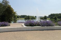 Cirkelserien - haven i Fælledparken Fountain, Outdoor Decor, Handmade, Home Decor, Blog, Hand Made, Decoration Home, Room Decor, Water Fountains