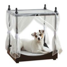 Pawslife™ Pet Canopy Bed - BedBathandBeyond.com