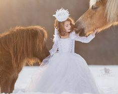 Swan Queen Costume Ice Princess