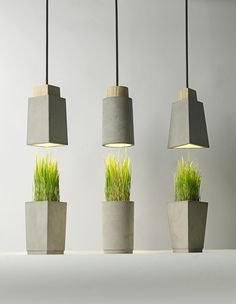 concrete planter that goes with pendant lights as center piece for the dinningroom table???  Bentu design #ConcreteLamp