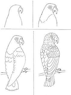 Art class ideas: parrots