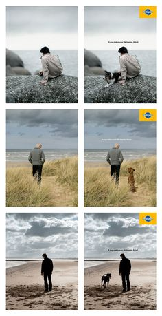 Pedigree - A Dog Makes Your Life Happier - Press Advertising