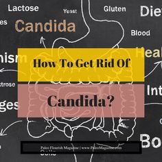how to get rid of candida spores