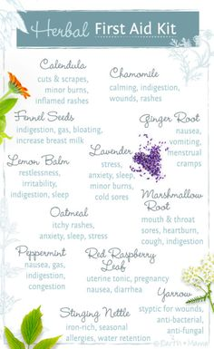 Earth Mama's Herbal First Aid Kit