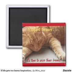 Shop If life gets too heavy Inspirational Magnet cat created by Personalize it with photos & text or purchase as is! Cat Quotes, Life Quotes, Cat Stretching, Round Magnets, Photo Magnets, Day Up, Quotes About Strength, Daughters, Cat Lovers